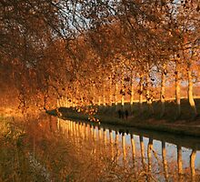 Evening reflections canal du midi Capestang  France by Paul Pasco
