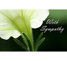 With Sympathy Photographic Print