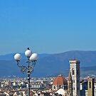 Florence Skyline by Tom Gomez