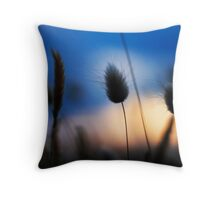 Salix Sunset Throw Pillow