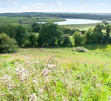 wild green Longford farmland by morrbyte