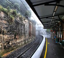 Leura railway station. Rain by andreisky