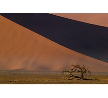 Dwarfed by Dunes - Namibia Photographic Print