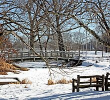 Snowy Bridge by Donna R. Carter