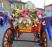 floral transport by Phoenix-Appeal