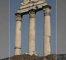 The Roman Forum, Rome III by Remine