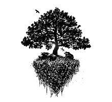 Black tree by Fil Gouvea
