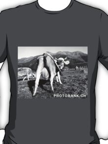 Cow back, sexy T-Shirt