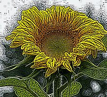 Sunflower Color Engraving Treatment by Jonice