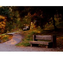 Two Lonely Benches Photographic Print