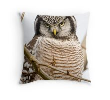 """""""Stare stare like a bear, I can see..."""" Throw Pillow"""