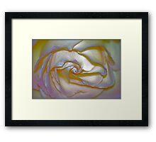 Pearlescent Framed Print