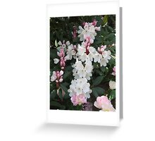 Designed by Nature Greeting Card