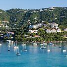 St Thomas Bay by dbvirago