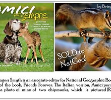 SOLD TO NATIONAL GEOGRAPHIC FOR A BOOK by Betsy  Seeton