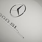 Mercedes 300 SL by Stefan Bau