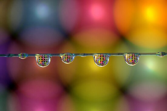 Coloured drops by Kounelli