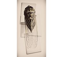 cicada project antique render Photographic Print