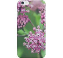 Milkweed Blooms iPhone Case/Skin