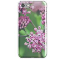 Milkweed Blooms iPhone Case/Skin