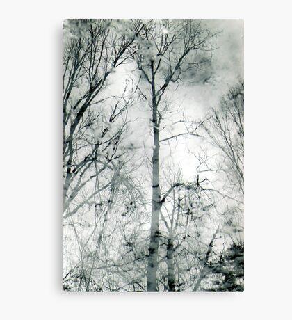 bare trees  #1 Canvas Print