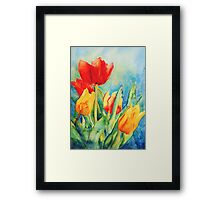 Primary Tulips Framed Print