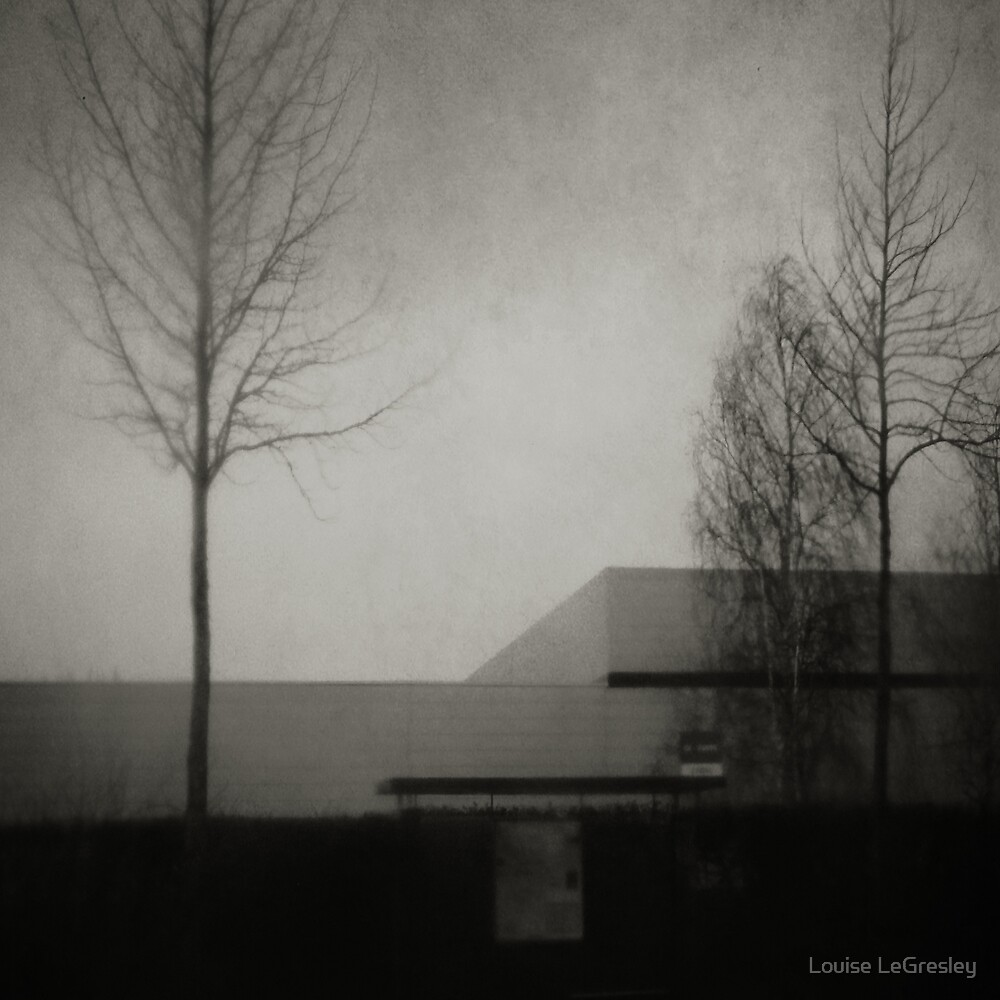 _ in the dead of winter _ by Louise LeGresley