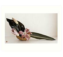 Ikebana-098 Art Print