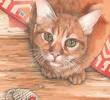 Alfie, fearsome mouse destroyer by Jenny Proudfoot