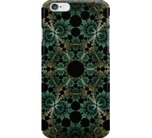 Wheel of Reflection iPhone Case/Skin