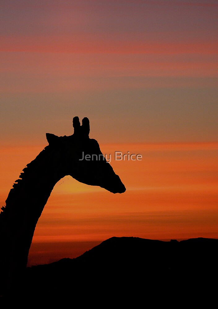 Giraffe at Sunset by Jenny Brice