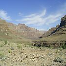 Grand Canyon by DanniiD
