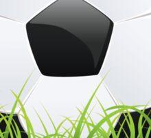 Soccer Ball with Grass Sticker