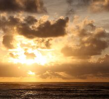 Beauty in Kauai by Nadine Rippelmeyer