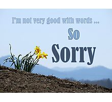 So Sorry Card With Daffodils Photographic Print
