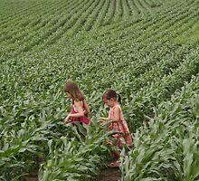 cornfields by Bridget Vander Veen