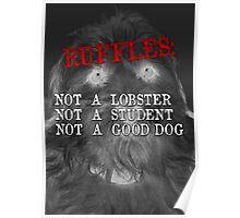 RUFFLES Poster