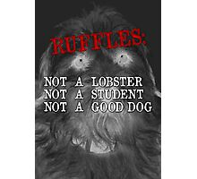 RUFFLES Photographic Print