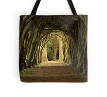 Cloister at Gormanston College Tote Bag