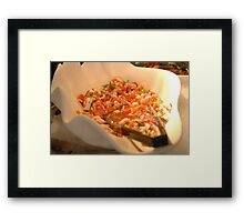 Ceviche Seafood  Framed Print