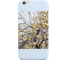 apples sag on tree in snow iPhone Case/Skin