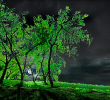 Green Moon by Igor Zenin