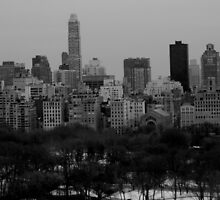 New York by Helaine