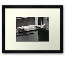 A Mother's Rest Framed Print