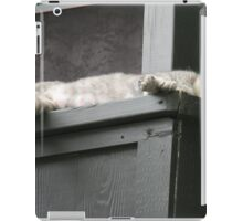 A Mother's Rest iPad Case/Skin