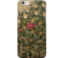 After the rain with a spike iPhone Case/Skin