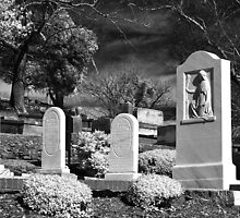 A First Lady's Grave by Patricia Montgomery