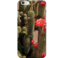 Red Flower Cactus iPhone Case/Skin