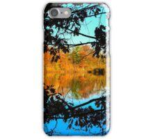 Fall Frame iPhone Case/Skin