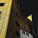 Berliner Philharmoniker by albertot